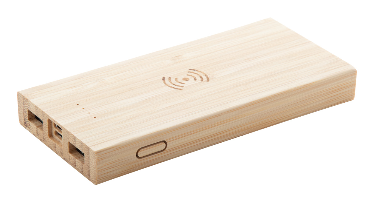 Wooster power bank